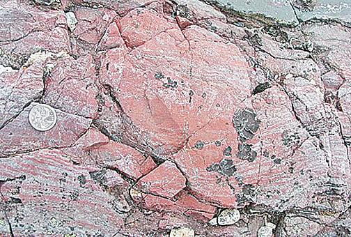 化石證據出土 43億年前地球已有生命