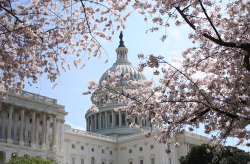3月6日,衆議院共和黨終於公佈期待已久的奧巴馬健保替代法案。新法案取消了對沒有健保人的個人處罰,以及用個人抵稅方式取代聯邦保險補助。(麗莎/大紀元)