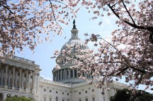 替代奧巴馬健保 美國共和黨發佈新法案