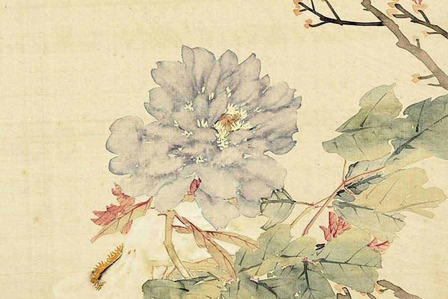 【經典名作中的秘密】花開時節動京城──牡丹
