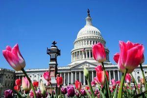 美眾院通過五千多億美元國防預算