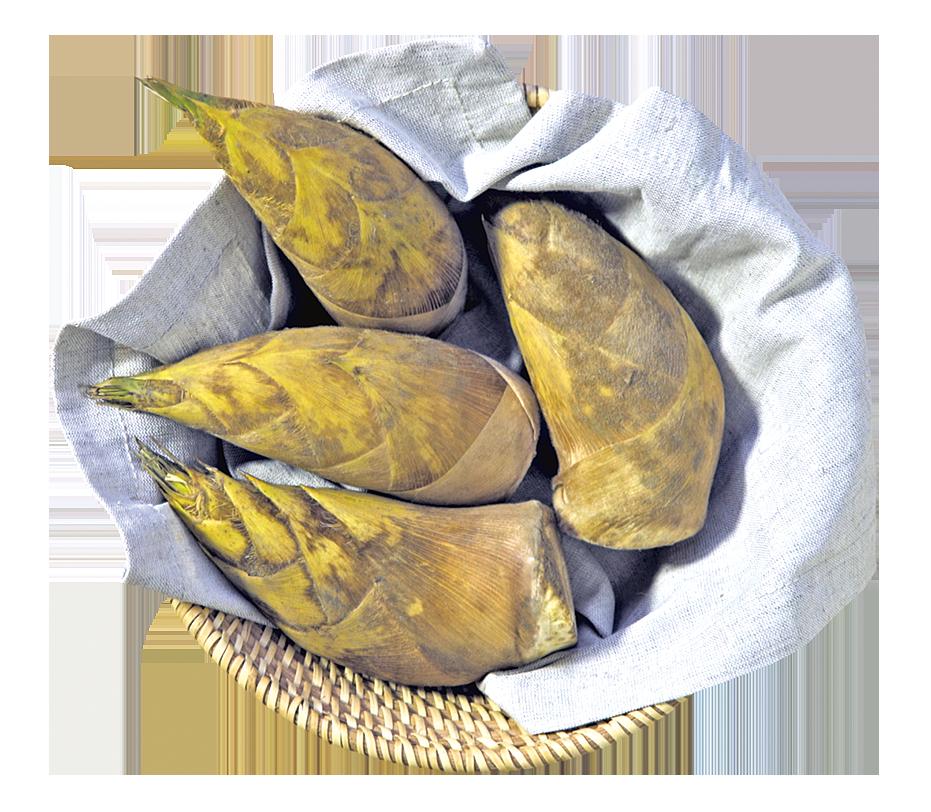 春筍吃起來口味清淡,但帶有一點淡淡的清香。