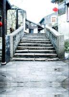 望南春與冬 (2)