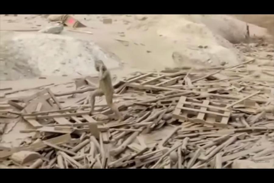女子拚命抓住漂浮的木板,用盡全身力氣爬了出來,踩著漂浮物,一步一搖晃地走向岸邊。(視像擷圖)