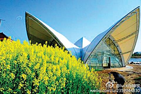 江蘇省南通市七星湖生態園內花瓣溫室建築,被網友稱為「山寨悉尼歌劇院」。(網絡圖片)