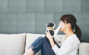 巧用磁磚 改善家居環境