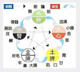 中藥名稱傳承文化