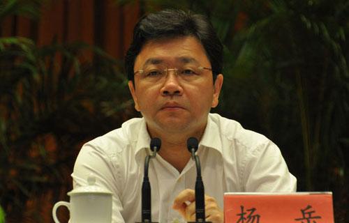 日前網傳江蘇省副省長楊岳跳樓,目前還未得到官方證實。(網絡擷圖)