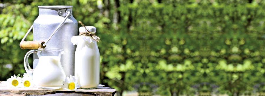 合理存儲乳製品美味又省錢