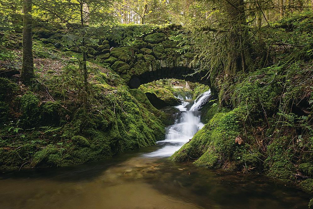 黑森林裏山林起伏,河溪輕流,綠樹成蔭。(網絡圖片)