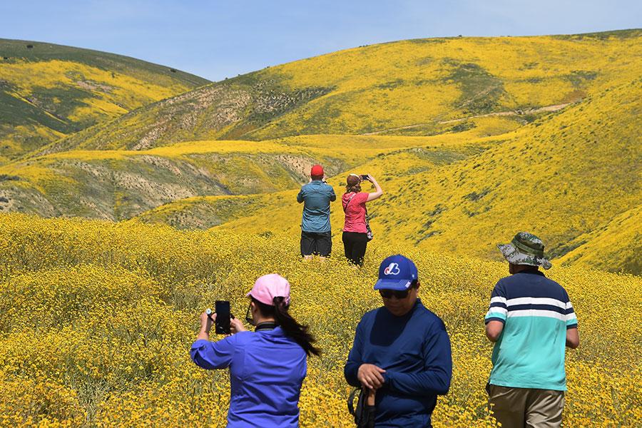 美麗的景象吸引遊客到訪。(Robyn Beck/AFP)