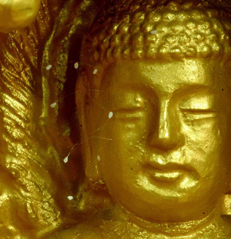 韓國全羅南道順天市海龍面的須彌山禪院的佛像,佛面上出現佛家傳說中的優曇婆羅花。(徐良玉/大紀元)