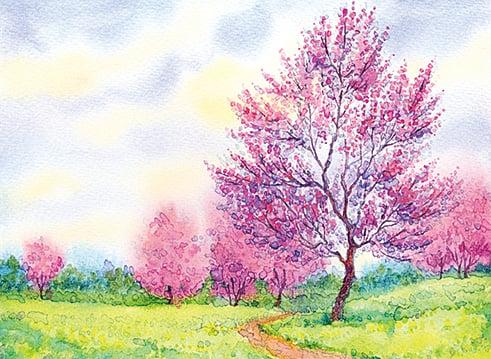 【心靈陽光】春天來了