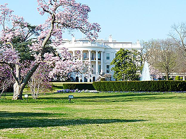 特朗普執政百日 300商人走進白宮