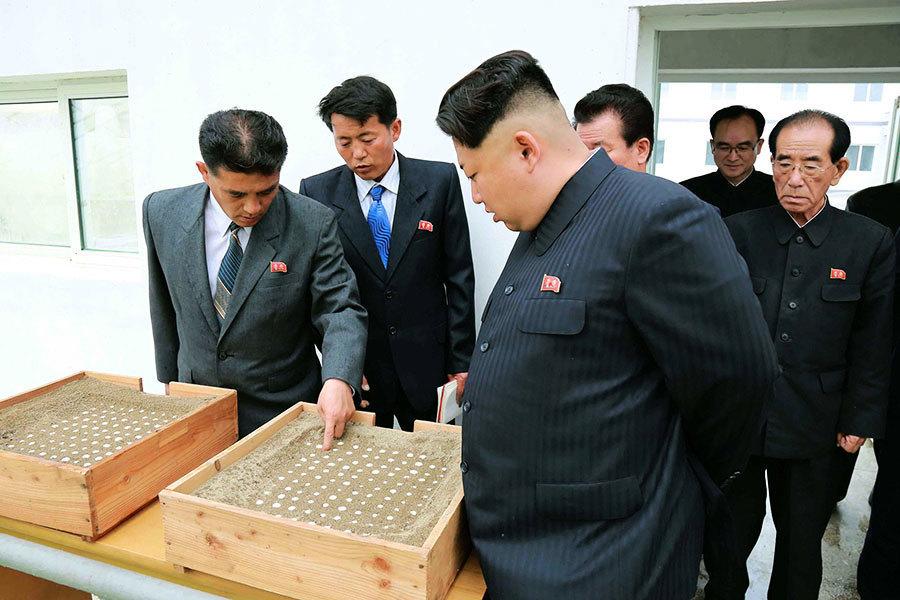 日本獲密件 金正恩掌控北韓政權秘密曝光