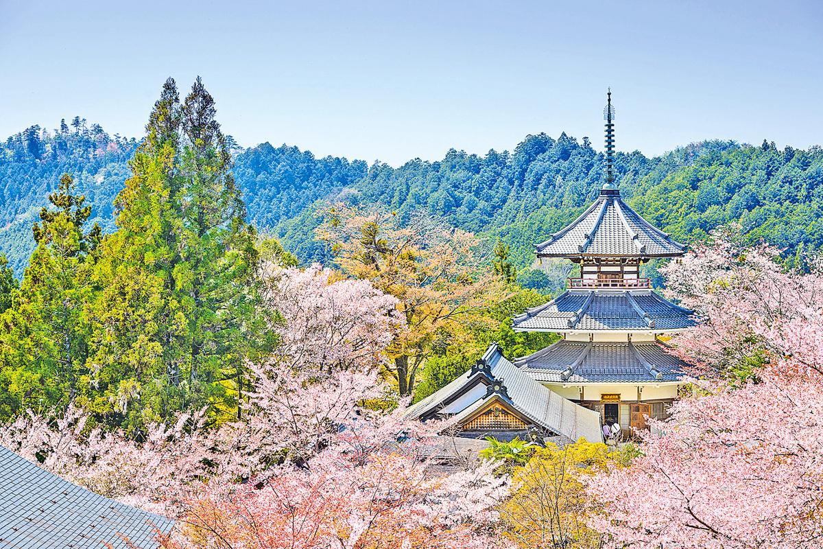 吉野山享有日本第一賞櫻名所的美譽。