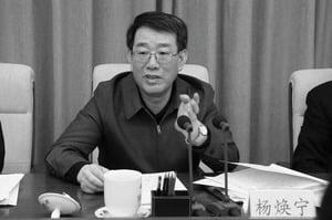 傳公安部前常務副部長楊煥寧被抓