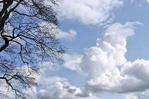 【名句人生】仰不愧於天 俯不怍於人