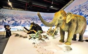 永凍層下的秘密 長毛象揭示的史前文明