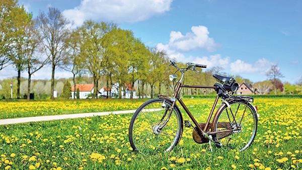 現代能源短缺,單車得天獨厚的以其便宜、輕巧、無污染和無噪音等優勢,再度搏得人們青睞,加上其綠色環保和回歸自然的概念,騎單車成為一種風雅時尚的運動。