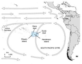 亨德森島(Henderson Island)是東南太平洋的島嶼之一,圖為其地理位置。(Jennifer Lavers, Proceedings of the National Academy of Sciences, 2017)