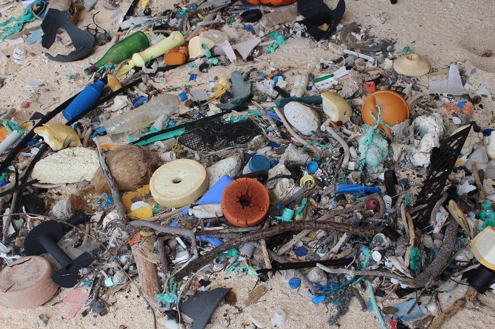 世界上最偏遠的小島居然成世界垃圾最密集的地區,最新研究呼籲人類重視塑料垃圾對海洋的污染。(IMAS, University of Tasmania, Credit: Jennifer Lavers)