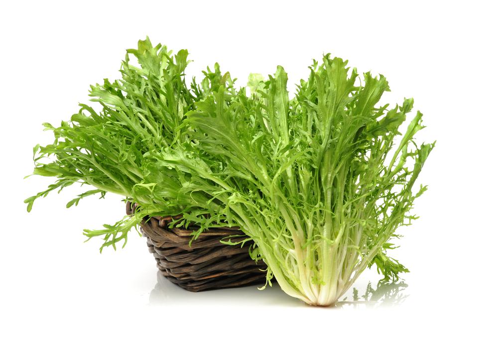 小滿時,中國民間有吃苦菜(苦苣、苦菊)的習俗。(shutterstock)