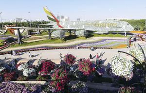 杜拜奇蹟花園 全球最大的自然花園
