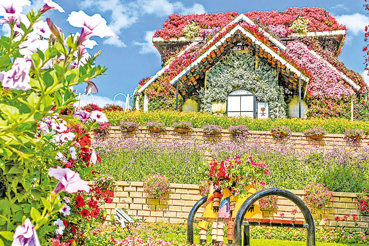 花團錦簇的房屋。