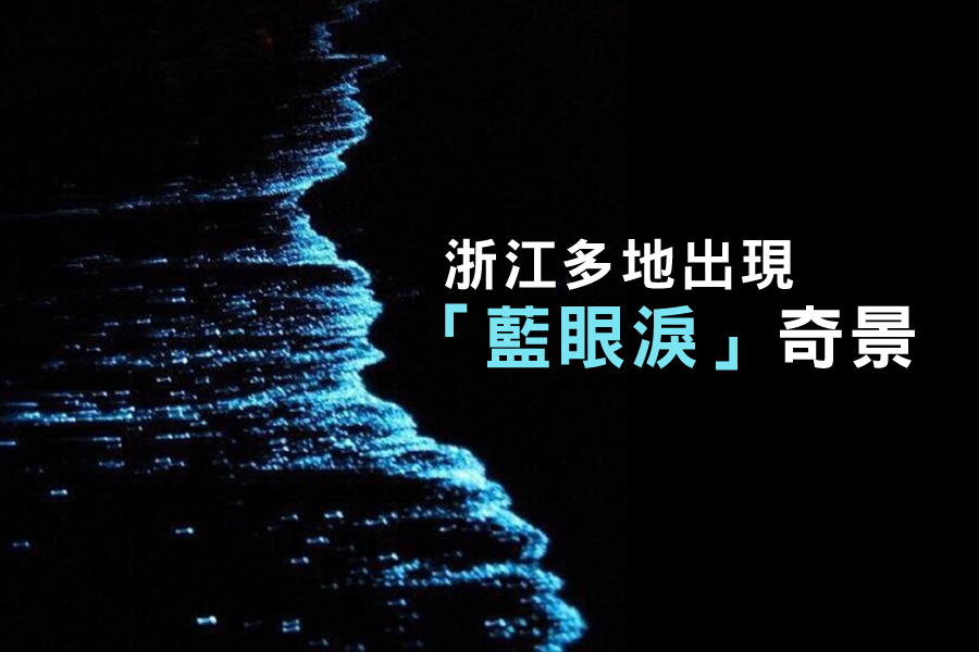 中國大陸浙江省北麂島、寧波市象山縣漁山列島等地海邊近期紛紛出現「藍眼淚」現象,大陸網民熱傳一系列照片。(網絡圖片)