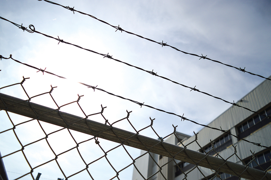 調查:有組織犯罪日益猖獗