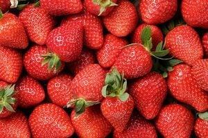 草莓連吃一個月 血脂降兩成