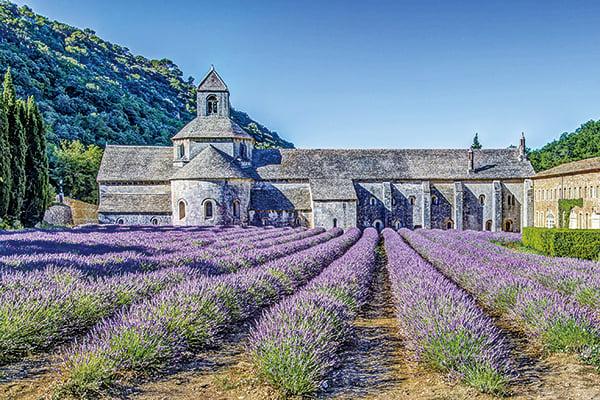法國南部地區盛產美酒美食,人民熱情樸實,寧靜的薰衣草,舒緩愜意的生活一向是旅遊者夢寐以求的旅遊聖地,而普羅旺斯更是避開塵囂享受優雅生活的夢想之地。