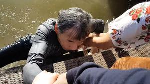 華裔女童被海獅拖下海 父親澄清未餵食