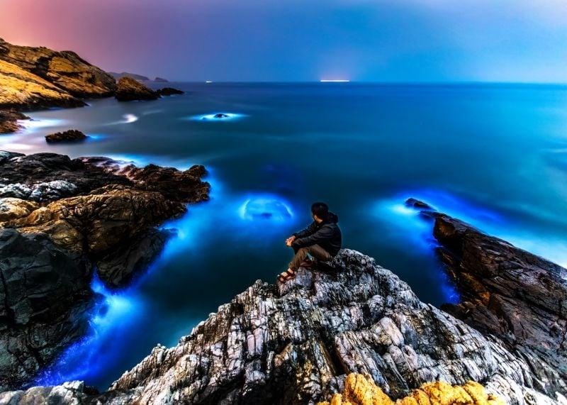 每年4月開始是台灣馬祖藍眼淚旺季。(觀光局馬祖風景管理處)