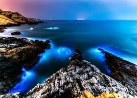 大陸垃圾漂台灣 世界「藍眼淚」美景遭毀