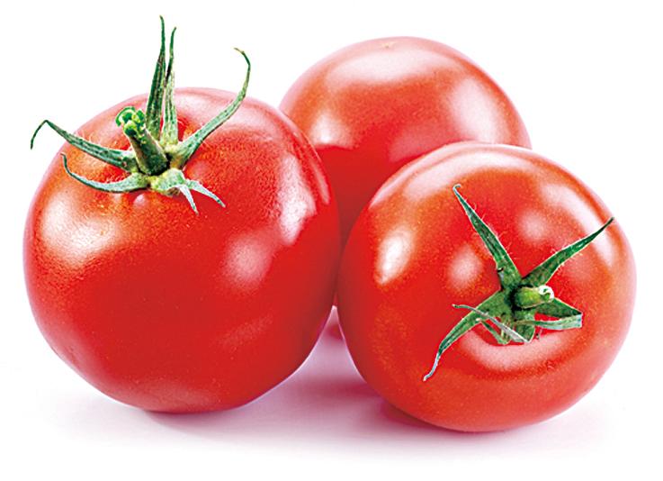 食物儲藏法 番茄