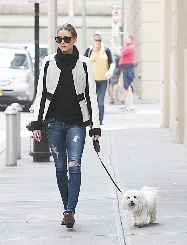 Olivia Palermo每次出街放狗都衣著時尚。(網絡圖片)