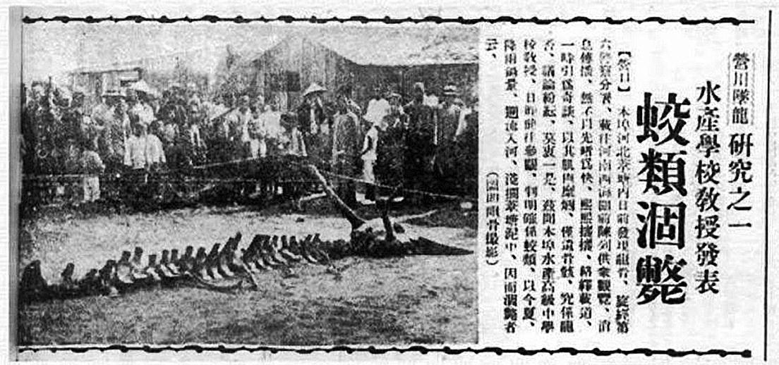 營口墜龍事件當時《盛京時報》的報道。(網絡圖片)