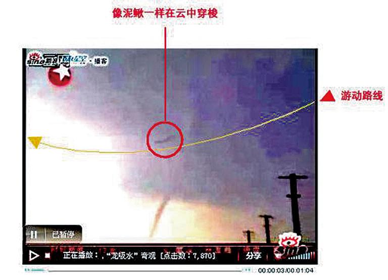 二零零八年六月十六日傍晚,江蘇高郵市西部高郵湖湖心出現「龍吸水」現象,以及疑似飛龍。(網絡圖片)