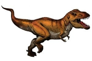 重大線索 科學家發現懷孕暴龍化石