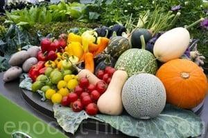 吃春兼養生 四種青蔬不可少