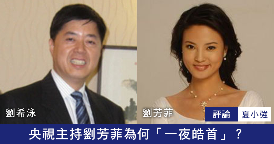 夏小強:央視主持劉芳菲為何「一夜皓首」?