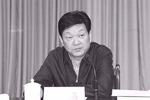陳思敏:新「西北虎」的背後關係網