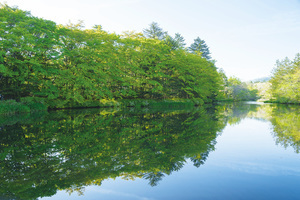 今夏太熱?日本8大避暑勝地供你選(上)