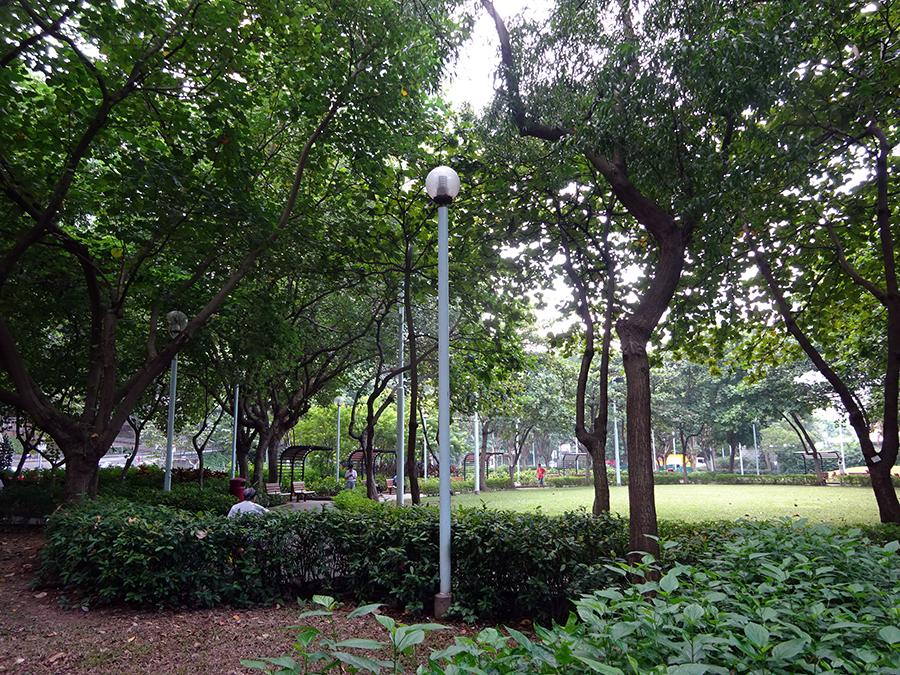 上月中,城規會否決政府要求拆除堅尼地城加多近街臨時花園。(Callyriam Wong/維基百科)