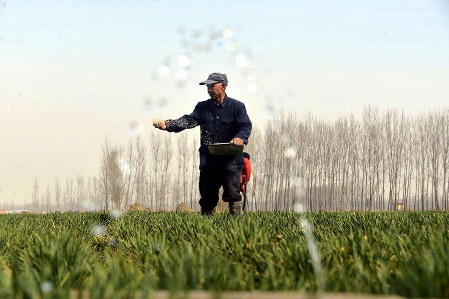 中國人糧食不夠吃 或許只剩一條出路