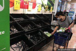 【苗柏襲港】超市肉菜被「洗倉」 罐裝食物亦受歡迎