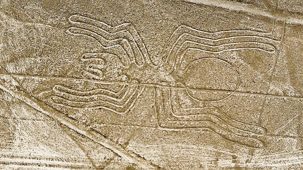 以一條單線砌成46米長的蜘蛛圖,據估計每砌成一條線條需要搬運幾噸重的石頭。(網絡圖片)