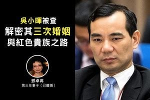 吳小暉被查 解密其三次婚姻與紅色貴族之路